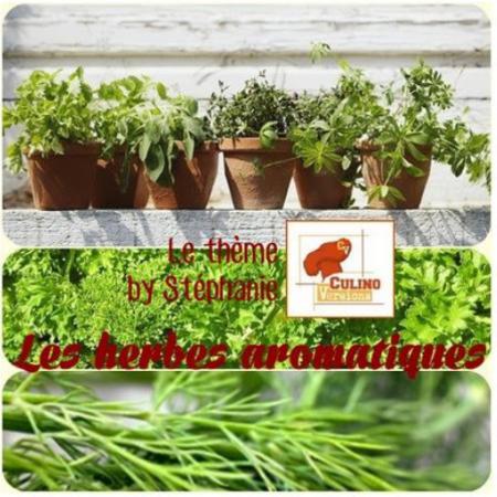 logo thème herbes aromatiques