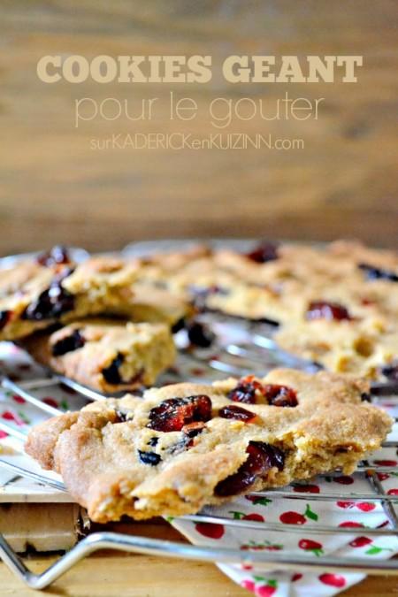 Deguster-cookies-geant-cranberries-gouter-450x675