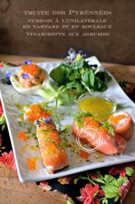 Degustation-truite-pyrennees-vinaigrette-agrumes-fenouil--525x788