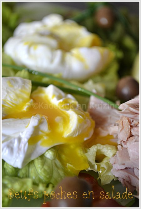 Presentation-oeufs-poches-salade